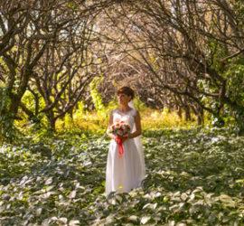 Свадебная фотосессия г.Полтава